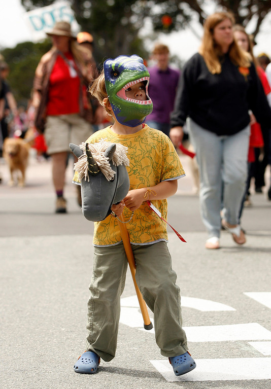 Description of . Max Smith, 4, dressed as Tyrannosaurus rex while walking with his unicorn  wooden horse during The Feast of Lanterns Pet Parade in downtown Pacific Grove, Calif. on Friday July 26, 2013.  (Photo David Royal/ Monterey County Herald)