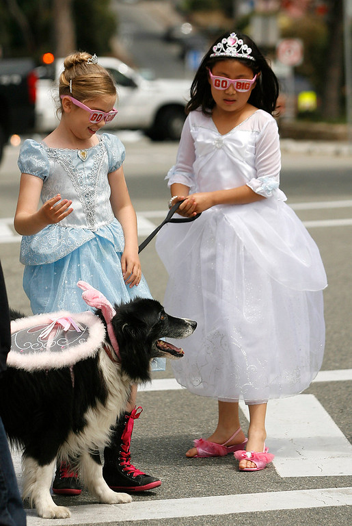 Description of . Jessica Badiny, 8, left and Hope Prince, 9, walk Scout who was dressed as a fairy princess during The Feast of Lanterns Pet Parade in downtown Pacific Grove, Calif. on Friday July 26, 2013.  (Photo David Royal/ Monterey County Herald)