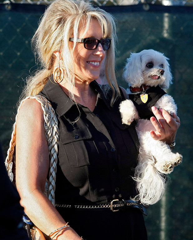 Description of . Karen Sundstrom from Redondo Beach holds her dog Enzo prior to the Tour d'Elegance in Pebble Beach on August 15, 2013.  (Vern Fisher/Monterey County Herald)