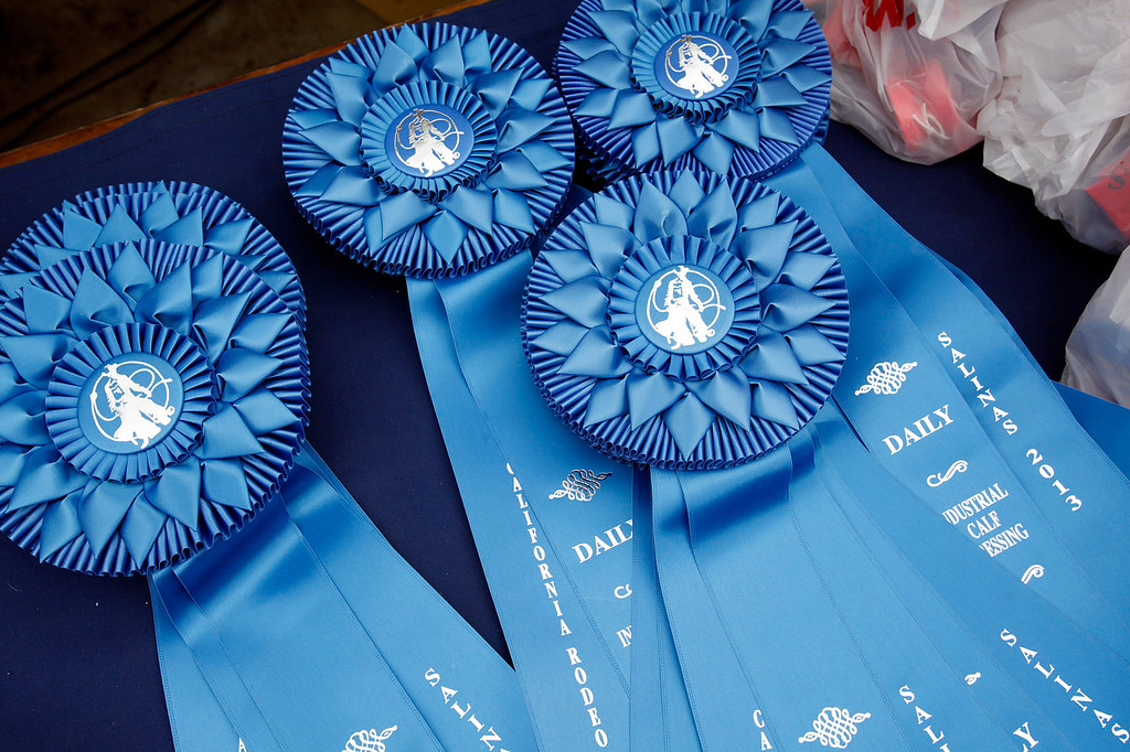 Description of . Do well, win a ribbon at the California Rodeo Salinas on July 18, 2013.  (Vern Fisher/Monterey County Herald)