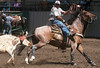 Ed Cohn ropes a steer during the roping competition at the Monterey National Horse Show Sunday, August 4th, 2013. (Matthew Hintz/Monterey County Herald)